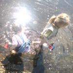 Kinder entdecken am Ufer